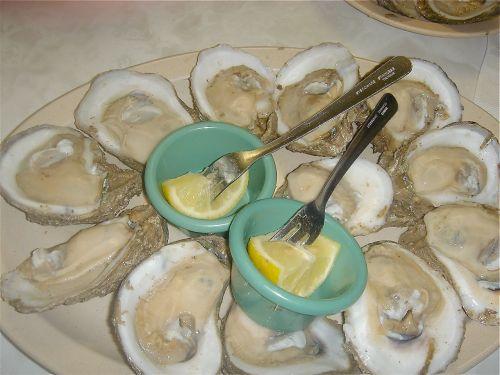 casamentos-oysters