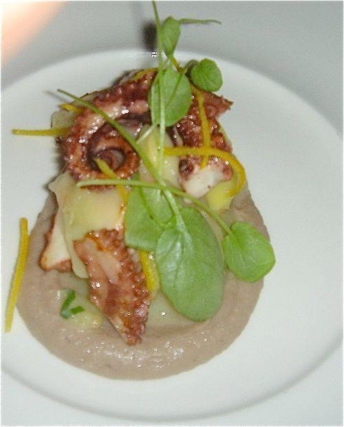 hatfields-octopus