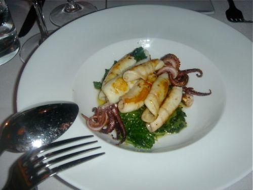 squid1
