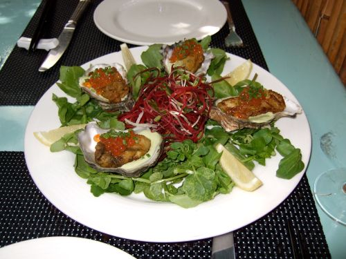 chin-oysters
