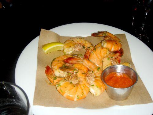 hungry-cat-shrimp1