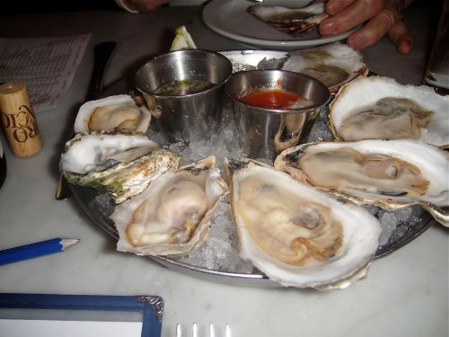 oysters 1