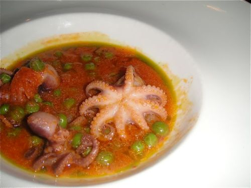 close-up of octopus