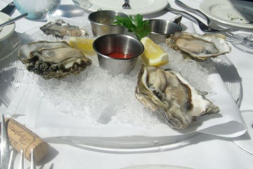 oysters at Lobstaer