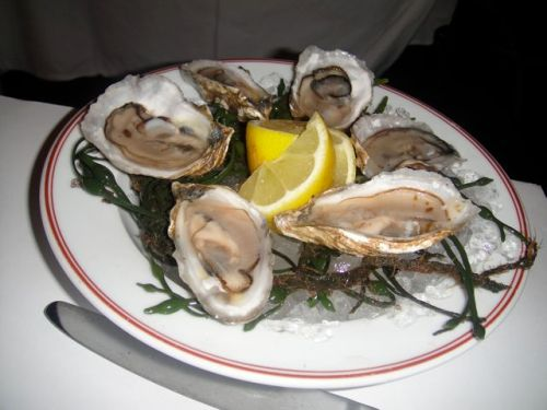 Bouchon Oysters 1