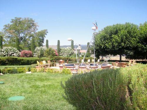 DG garden