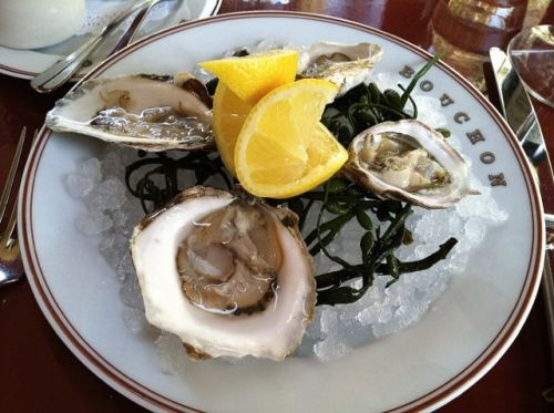 B- oysters