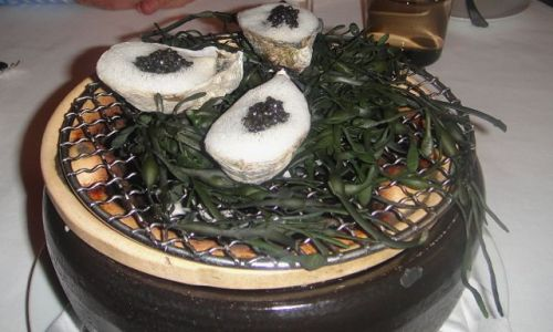 Providence - grilled Oyster