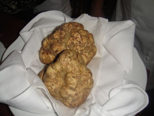 V- close-uup of truffles